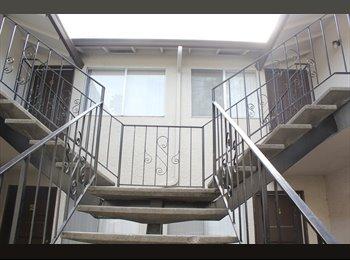 EasyRoommate US - SPACIOUS ROOM FOR RENT - San Jose, San Jose Area - $950 /mo