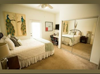 EasyRoommate US - Spacious room are available (first month, half rent) - Tucson, Tucson - $495 /mo