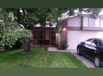 EasyRoommate US - Room For Rent  , Berkley - $550 /mo