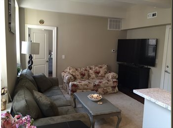 EasyRoommate US - Spacious 1 BR Apartment in Downtown New Haven for Rent (Available Now) - New Haven, New Haven - $1,410 /mo