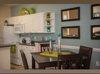 EasyRoommate US - Looking for a Roommate, private bath and bedroom - Greenville, Greenville - $500 /mo
