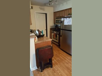 Looking for New Roommate