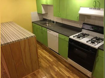 Newly Remodeled Apt - Walk to MIT / Kendall - Young...