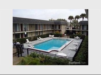 S Tampa Simple Apartment