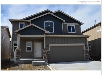 EasyRoommate US - Brand new home - Colorado Springs, Colorado Springs - $725 /mo