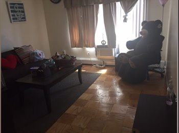 1 bedroom apt, room share, New rochelle