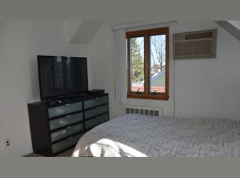 Cozy apartment to share. Near to Hofstra University....
