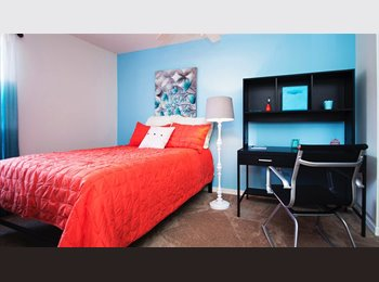 EasyRoommate US - Super Clean Apartment! - Gainesville, Gainesville - $421 /mo