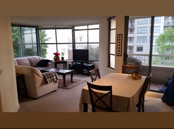Room available in large 2BD 2BA Apt with a great view