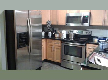 EasyRoommate US - Roommate in Rochester downtown condo - Corn Hill, Rochester - $350 /mo