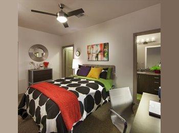 Cozy Room right next to ASU!