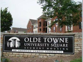 EasyRoommate US - Toledo Olde Towne 3 BR APARTMENT SUBLEASERS  - Toledo, Toledo - $549 /mo