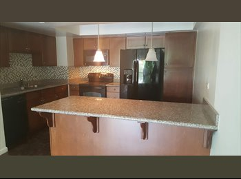 Downtown High Rise Condo For Rent