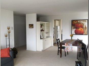 room in spacious, luminous condo