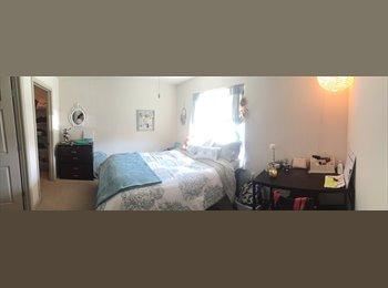 EasyRoommate US - Large single room in flat - San Marcos, San Marcos - $590 /mo