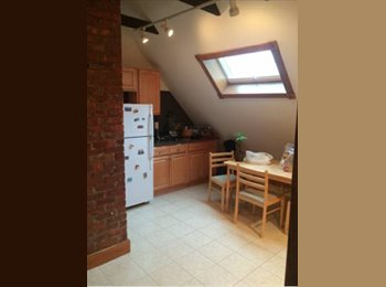 EasyRoommate US - Spacious & light room in East Rock - New Haven, New Haven - $850 /mo