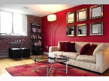 exclusive one bedroom apratment