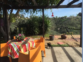 EasyRoommate US - A Place to call home :), San Diego - $800 /mo
