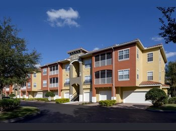 EasyRoommate US - apartment available for sublease - South Tampa, Tampa - $1,113 /mo