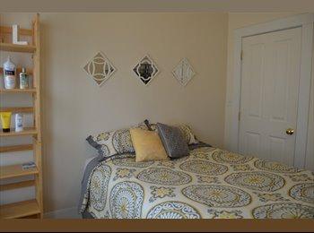 1 room in 2 BR 1 Bath Somerville Apt- Sept 1
