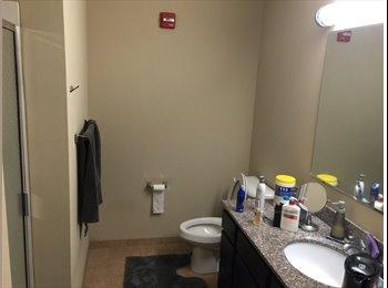 EasyRoommate US - Cardinal towne 2 bedroom two bathroom one roomate - Louisville, Louisville - $640 /mo