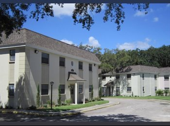 EasyRoommate US - In Search of Christian Roommate (Females only) - South Tampa, Tampa - $475 /mo