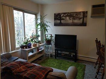 EasyRoommate US - Looking for a roommate in my apartment near downtown Ann Arbor - Ann Arbor, Ann Arbor - $600 /mo