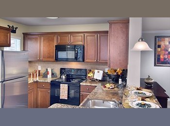 EasyRoommate US - New Luxury Apartment - Looking for Roommate! - Kennesaw / Acworth, Atlanta - $590 /mo
