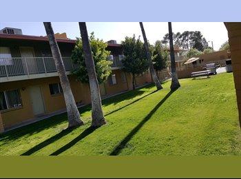 EasyRoommate US - Spacious two bedroom one bath - Tucson, Tucson - $699 /mo