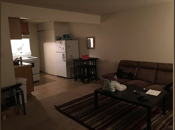 In search of a clean, friendly, female roommate!