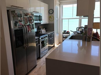 EasyRoommate US - Newly Renovated Apartment in Heart of the Mission - Mission, San Francisco - $1,955 /mo
