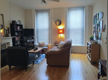 1 Roommate Needed: Spacious Apartment in Lincoln Park w/...