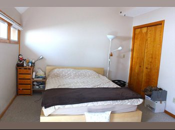 EasyRoommate US -  - New Haven, New Haven - $750 /mo
