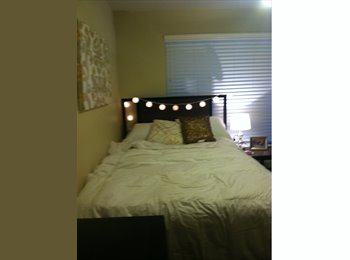 EasyRoommate US - Spacious apartment with affordable rent - NW San Antonio, San Antonio - $499 /mo