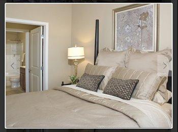 EasyRoommate US - Room to Rent - St Paul West, Minneapolis / St Paul - $750 /mo