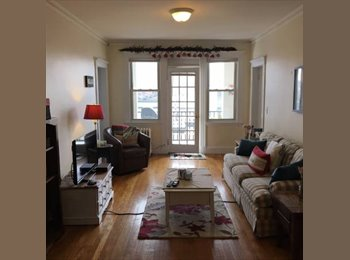 EasyRoommate US - Beautiful bedroom with sunroom - Brighton, Boston - $900 /mo