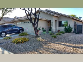 EasyRoommate US - COMFY AND COZY HOME SHARE, Tucson - $450 /mo