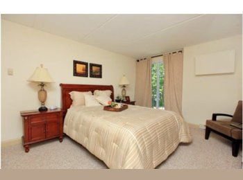 EasyRoommate US - FEMALE roommate only please - Hudson/Park, Albany - $500 /mo