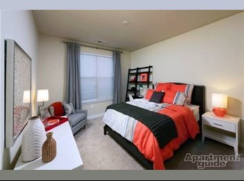 Profesional Male Looking for Professional Roommate in Falls...