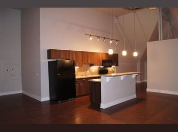 EasyRoommate US - Beautiful 3 bedroom looking for one more roommate - Pittsburgh Southside, Pittsburgh - $800 /mo