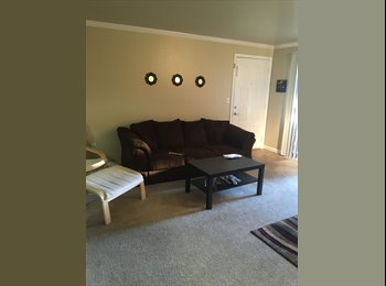 Young professional roommate wanted!