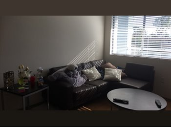 Private Room + private bathroom available near CSUF and...