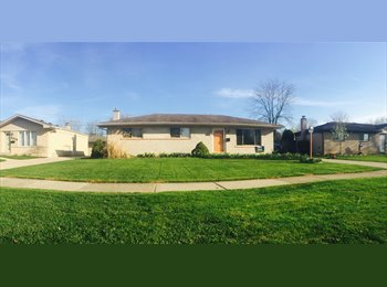 One room for rent at a beautiful home in Sterling Heights
