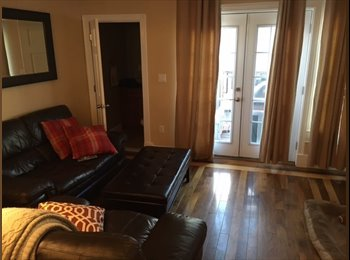 SOUTH BOSTON 1 BR-1200-TO RENT