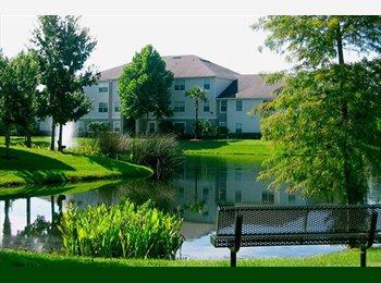 EasyRoommate US - Need Reliable Roommate  - New Tampa, Tampa - $550 /mo
