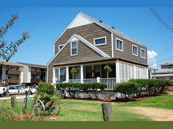 EasyRoommate US - Seeking roommate for beautiful Beach Cottage! - Norfolk, Norfolk - $700 /mo
