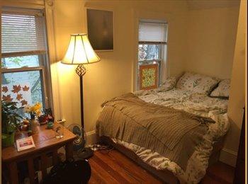 EasyRoommate US - Beautiful room near Davis Sq in huge house! - Cambridge, Cambridge - $750 /mo