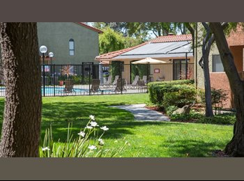EasyRoommate US - Room in 2 bed 1 bath apartment walk to BART (male) - Union City, San Jose Area - $1,043 /mo