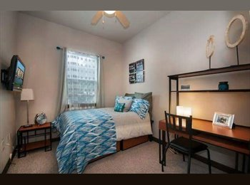 Cheap 4050 lofts sublease