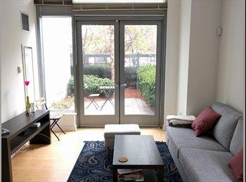 Beautiful & Bright Apartment in Cambridge